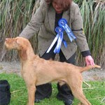 Amiryck Sabik at Barcutan - First NZ Champion HWV